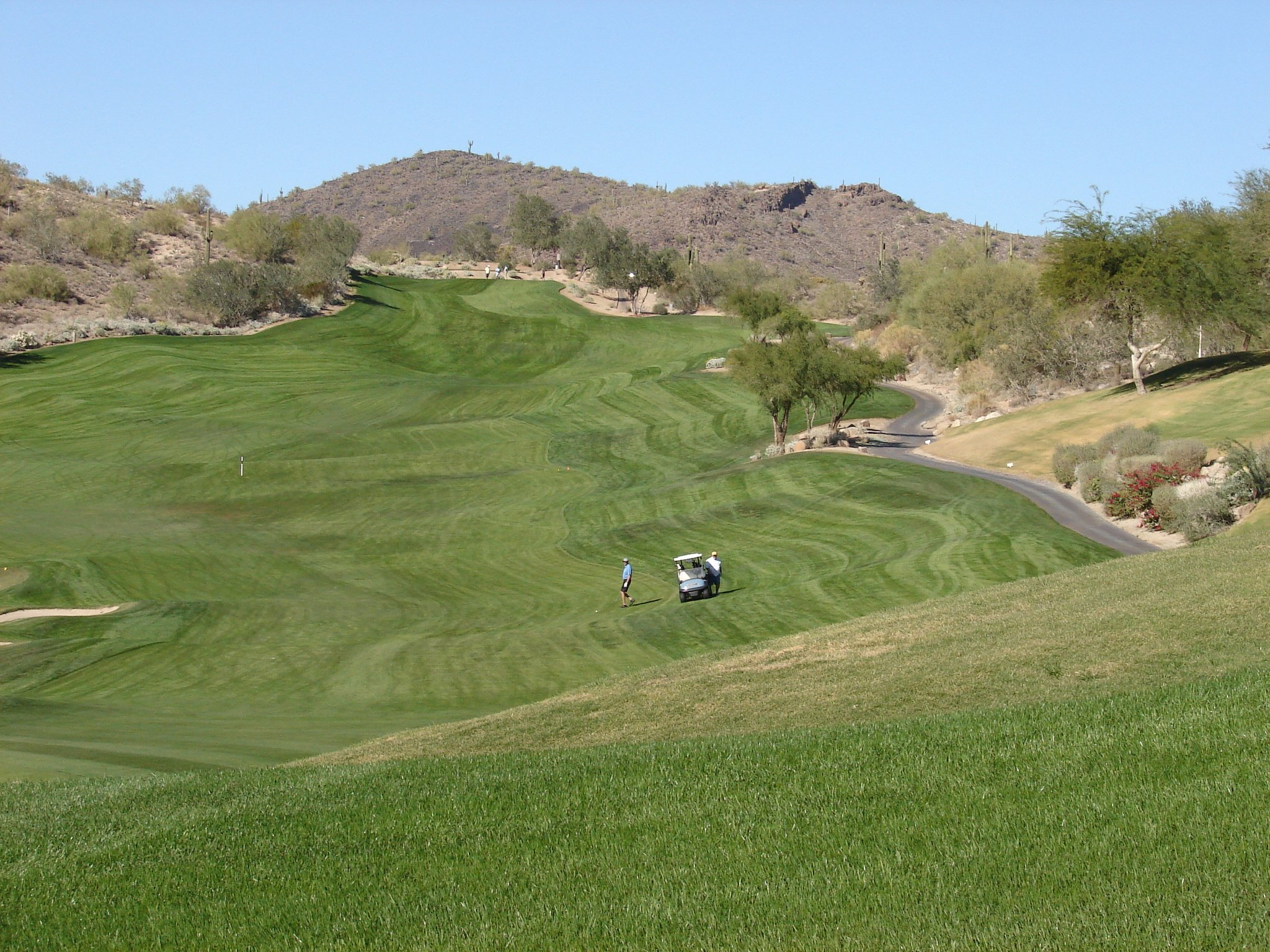 Homes For Sale In Fountain Hills On Golf Course